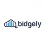 www.bidgely.com