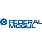 Federal Mogul Goetze India Logo