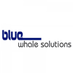 www.bluewhalesolutions.com